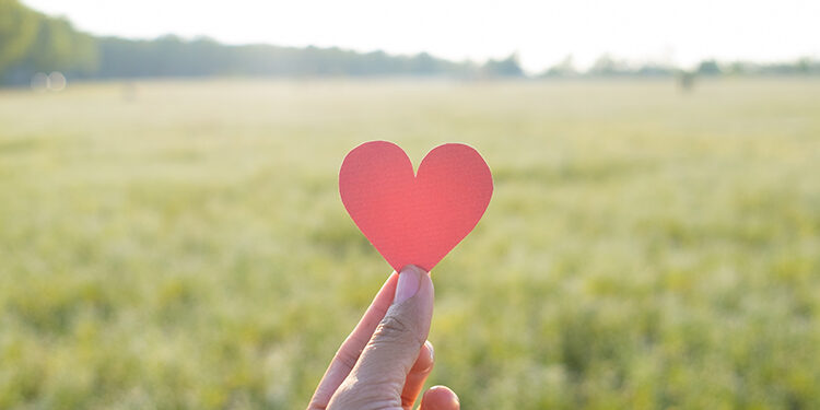 Finger keep red heart with grass field background.